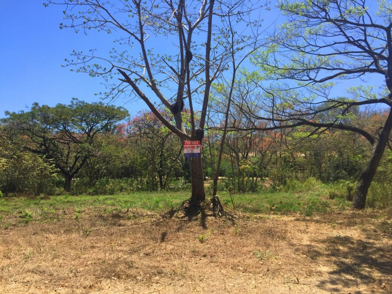 Remax real estate, Costa Rica, Nosara, Affordable, Flat Lot in Quiet Area of Playa Pelada - SOLD