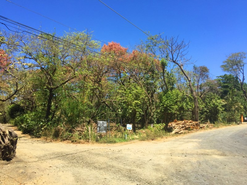 Remax real estate, Costa Rica, Nosara, Pelada Property Just 2 Minutes Walking from the Beach