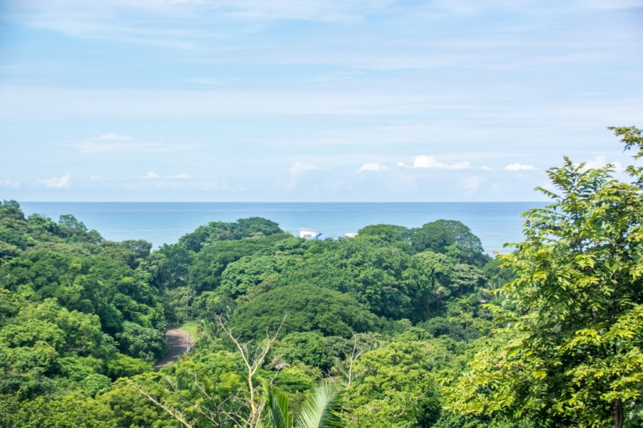 Remax real estate, Costa Rica, Nosara, Compound Style View Property on Private Road Surrounded by Nature - SOLD