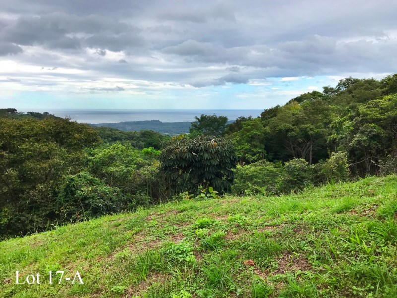 Remax real estate, Costa Rica, Nosara, Bosque Verde - A Private Gated Community with Vast Ocean / Protected Parkland Views and Excellent Infrastructure