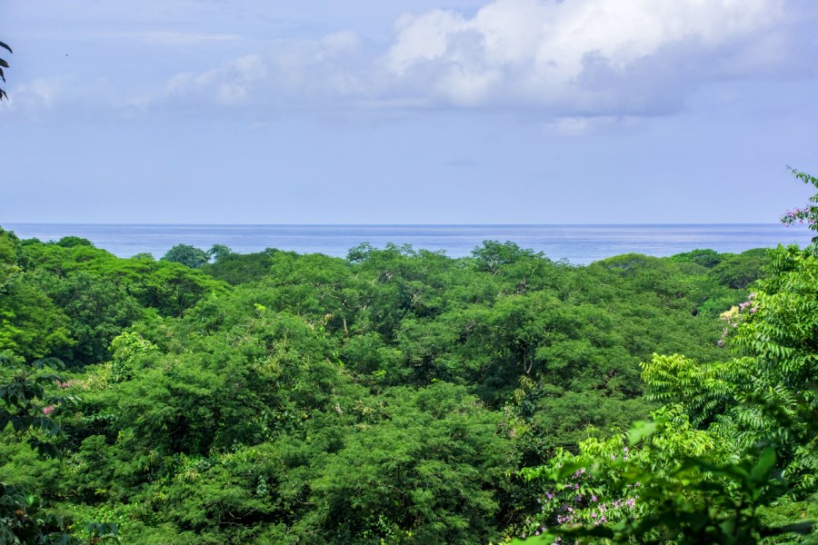 Remax real estate, Costa Rica, Nosara, Elevated Pelada Double Lot - Nearly 1 Acre with Ocean Views