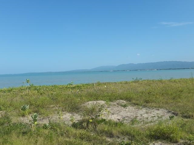 RE/MAX real estate, Jamaica, Black River, Lovely Development land for sale mls#24132