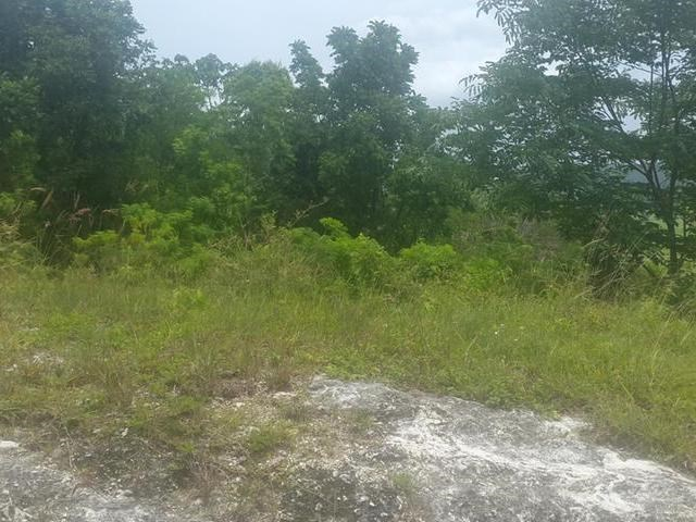 RE/MAX real estate, Jamaica, Shefeild, Lovely residential lot for sale mls#24133