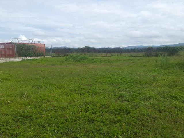 RE/MAX real estate, Jamaica, Savanna-la-Mar, Lovely Residential lot for sale mls#26680