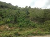 RE/MAX real estate, Jamaica, Spanish Town, LOT 27 MOUNT VIEW ESTATES	MLS# 29962