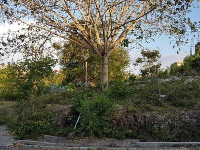 RE/MAX real estate, Jamaica, Negril, WHITEHALL MLS# 36103
