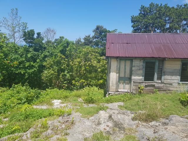 RE/MAX real estate, Jamaica, Bluefields, BRIGHTON MLS# 36466