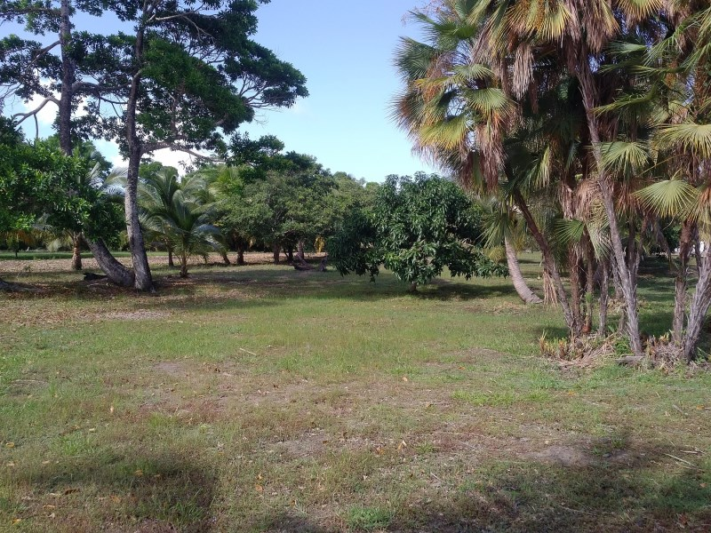 Remax real estate, Belize, Independence, L3668 - Building Lot Close to Placencia Lagoon
