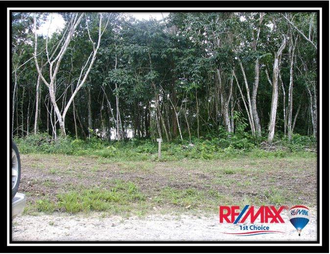 Remax real estate, Belize, Orange Walk, L3669 - Progresso Heights