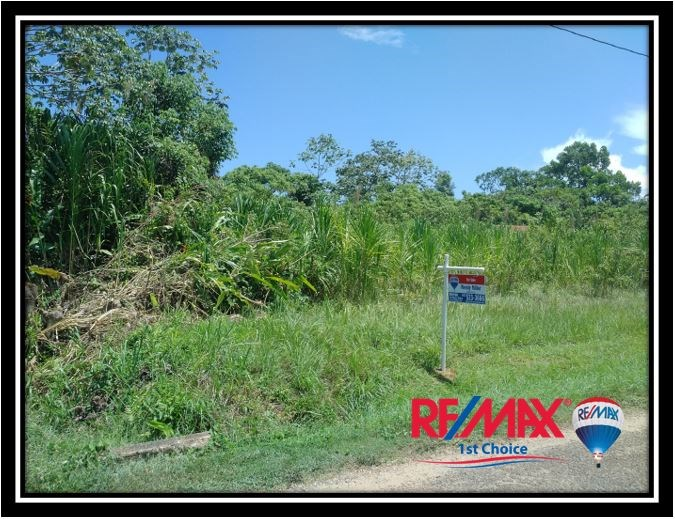 Remax real estate, Belize, Sittee River, L3663 - Over 2 Acres with 150' River Frontage