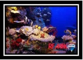 Remax real estate, Belize, Progresso, L3660 - Progresso Heights, Belize - PRICE REDUCED