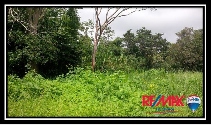 Remax real estate, Belize, Sittee River, L3629 - RiverView Lot outside Sittee River Village