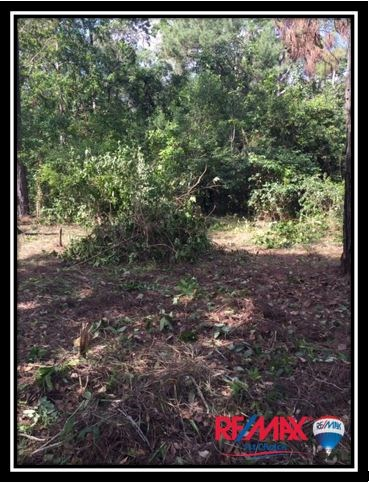 Remax real estate, Belize, Stann Creek, L3672 - Over An Acre House Lot