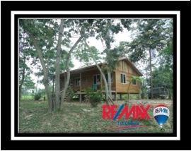 Remax real estate, Belize, Independence, L3645 - 21 Acres Off-Grid Living