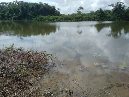 Remax real estate, Belize, Sittee River, L3677 - Phase 3, Lot 93, Sittee Point