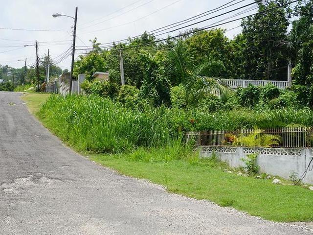 RE/MAX real estate, Jamaica, Montego Bay, EDINBURGH St. James Montego Bay