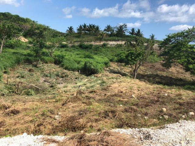 RE/MAX real estate, Jamaica, White House WD, PARADISO BLVD. Westmoreland White House WD