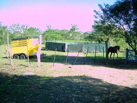 Remax real estate, Costa Rica, San Isidro, Hilltop Farm in San Isidro, Santa Teresa