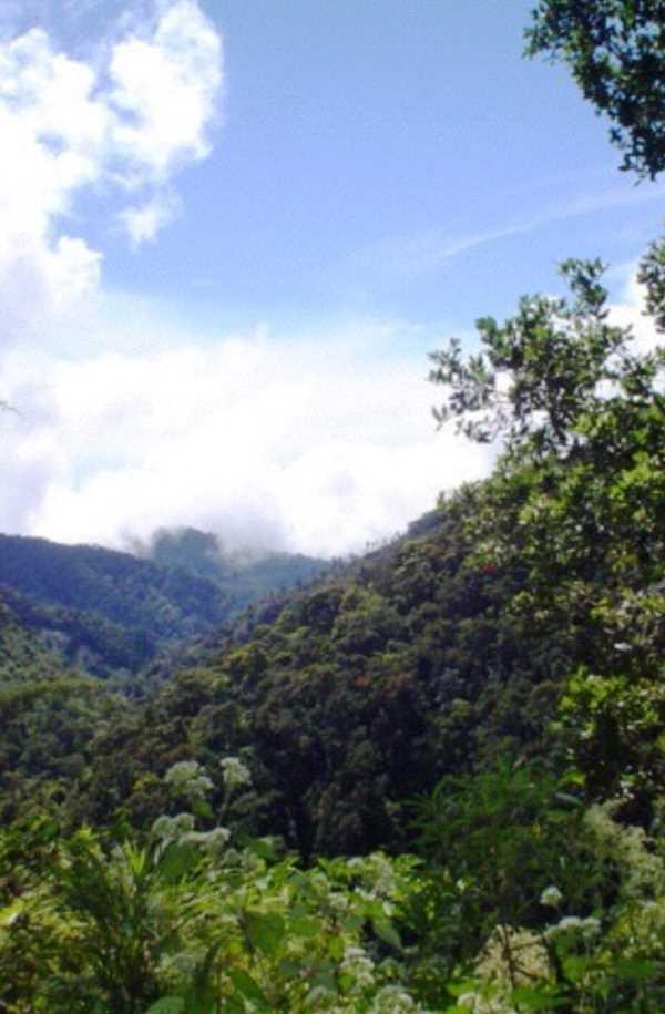 Remax real estate, Costa Rica, San Jose, Mountain Lodge for Sale