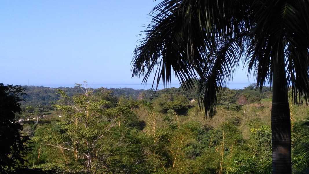 Remax real estate, Costa Rica, Cobano, Nature Paradise near the Coast