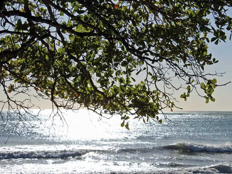 Remax real estate, Costa Rica, Manzanillo, HOTEL ZONED MANZANILLO BEACH FRONT PROPERTY