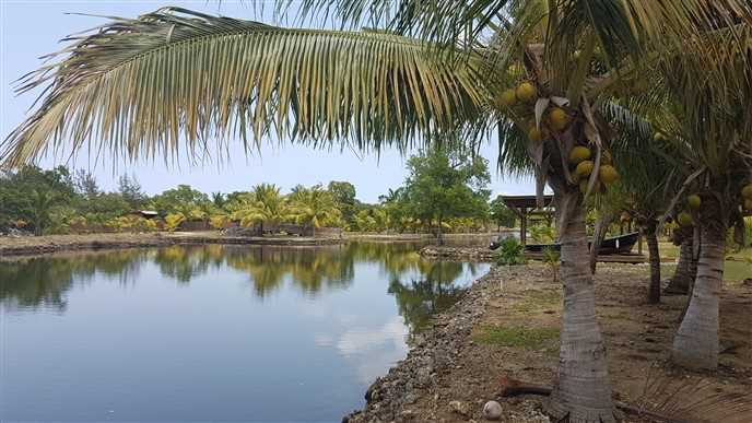 Remax real estate, Honduras, Utila, Lot with Covered Boat Slip