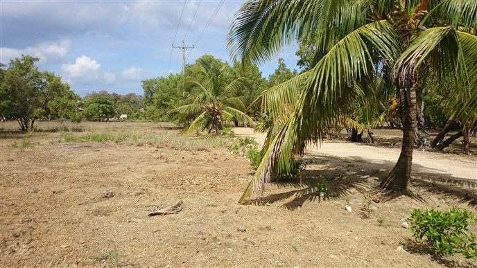 Remax real estate, Honduras, Utila, Beach Front at Little Bight