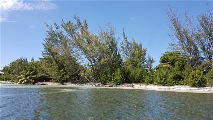 Remax real estate, Honduras, Utila, Pine Point Lot