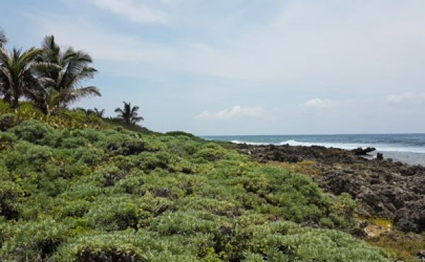 Remax real estate, Honduras, Utila, Pumpkin Hill Lot with Ocean View