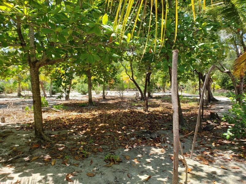 Remax real estate, Honduras, Utila, Jonathan Point Lot With Ocean View