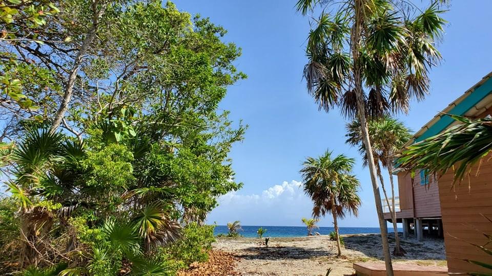 Remax real estate, Honduras, Utila, Beach Access Lot at Coral Beach