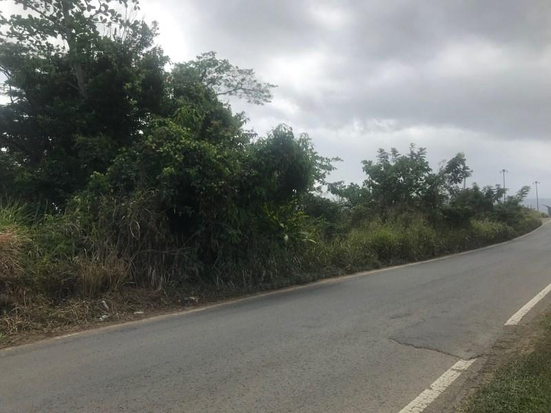 RE/MAX real estate, Puerto Rico, Rio Grande, 10 cuerdas en Bo Cienaga Alta , Rio Grande