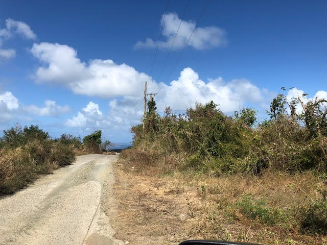 RE/MAX real estate, British Virgin Islands, East End, 0.35 of an acre .Gentle Sloping Land with Views of Buck Island