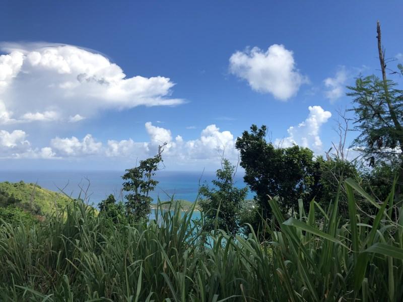 RE/MAX real estate, British Virgin Islands, Cane Garden Bay, Just under half acre of gentle slope land for sale