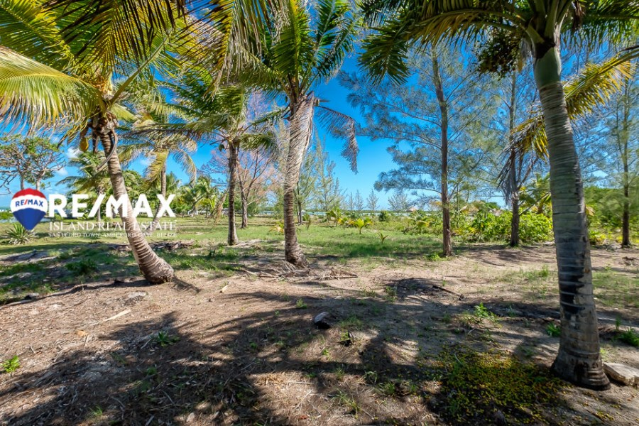 RE/MAX real estate, Belize, San Pedro, Picturesque Beachfront Land for Sale!