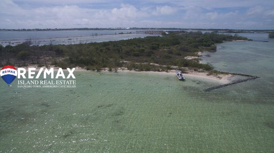 Remax real estate, Belize, San Pedro, Sandy Beachfront