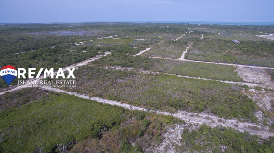 Remax real estate, Belize, San Pedro, Grand Belizean Estate Lots