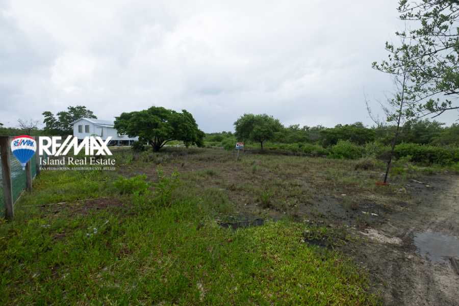 Remax real estate, Belize, Caye Caulker, Just 100 FT from the Sea!