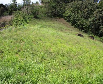 RE/MAX real estate, St. Vincent and the Grenadines, Kingstown, ACREAGE FOR DEVELOPMENT