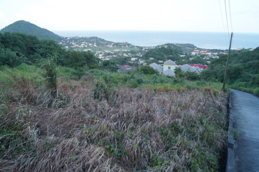RE/MAX real estate, St. Vincent and the Grenadines, Prospect, HARMONY HALL LOT