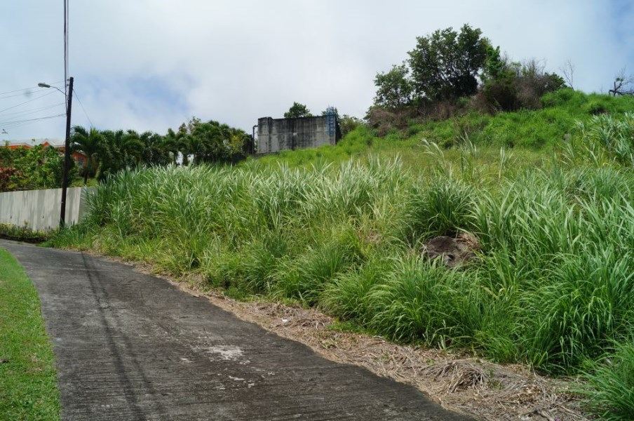 RE/MAX real estate, St. Vincent and the Grenadines, Prospect, HILL SIDE LOT. HARMONY HALL