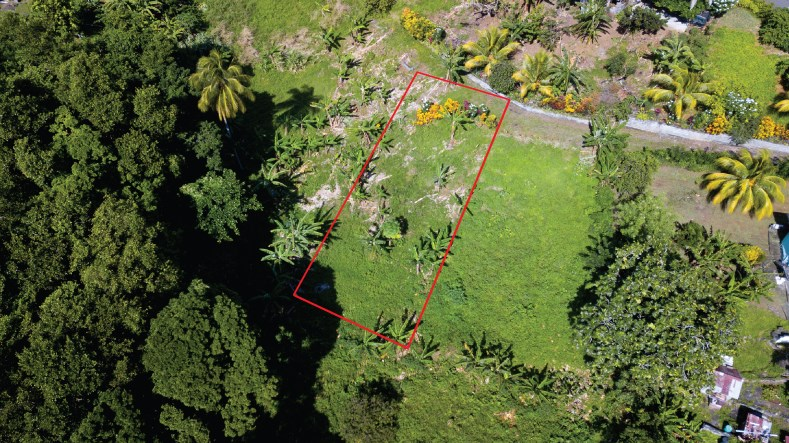 RE/MAX real estate, St. Vincent and the Grenadines, Enhams, MC CARTHY BUILDING LOT