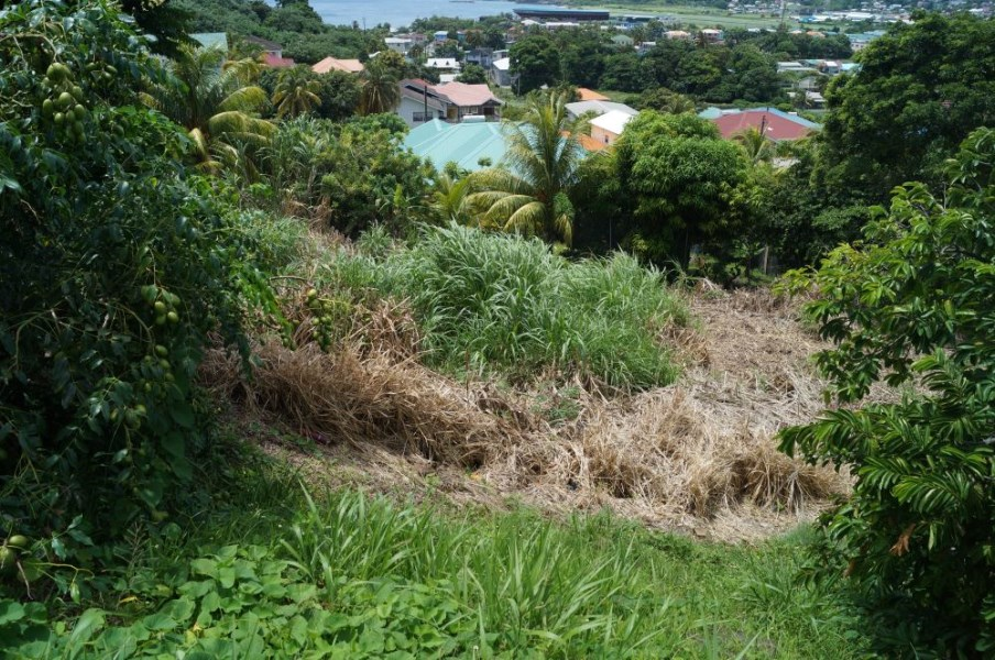 RE/MAX real estate, Saint Vincent and the Grenadines, Arnos Vale, ARNOS VALE LOT