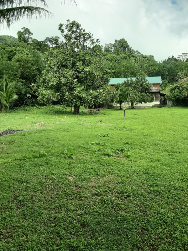 RE/MAX real estate, Saint Vincent and the Grenadines, Buccament, BUCCAMENT VALLEY  SPECIAL
