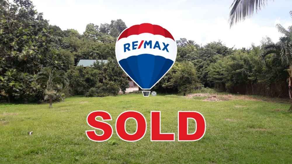 RE/MAX real estate, St. Vincent & Grenadines, Buccament, BUCCAMENT VALLEY  SPECIAL