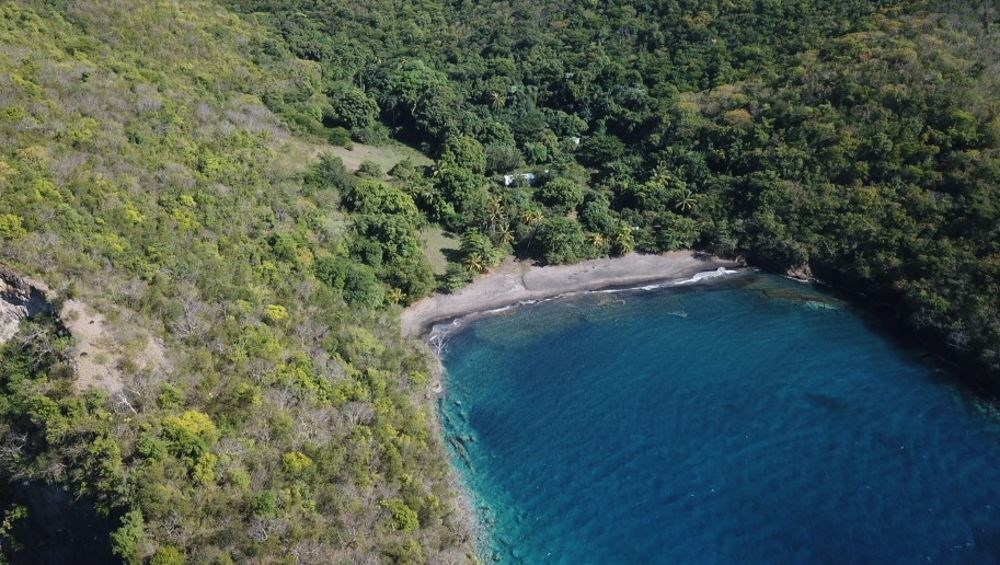 RE/MAX real estate, Saint Vincent and the Grenadines, Layou, 32 ACRES PRIME BEACH FRONT PROPERTY