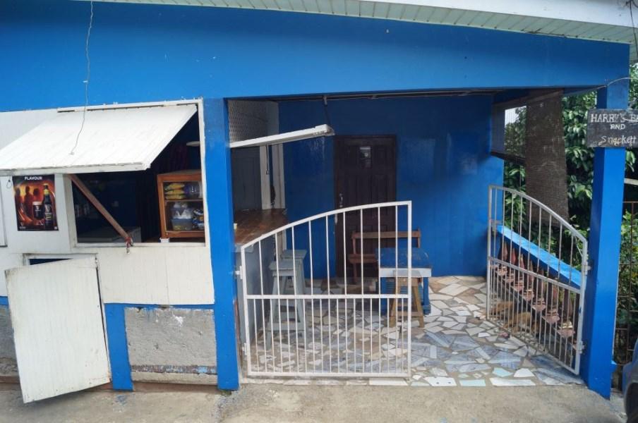 RE/MAX real estate, St. Vincent & Grenadines, Belmont, BELMONT MULTI-USE