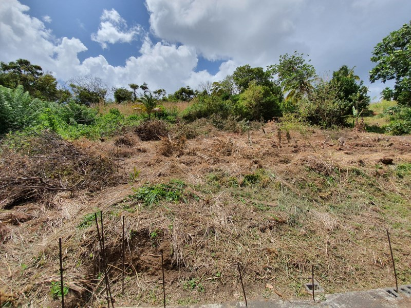RE/MAX real estate, Saint Vincent and the Grenadines, Fountain, FAIR HALL BUILDING LOT