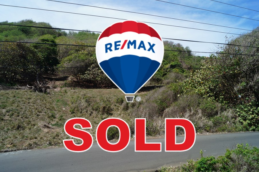 RE/MAX real estate, St. Vincent & Grenadines, Argyle, ARGYLE - AIA BYPASS RD