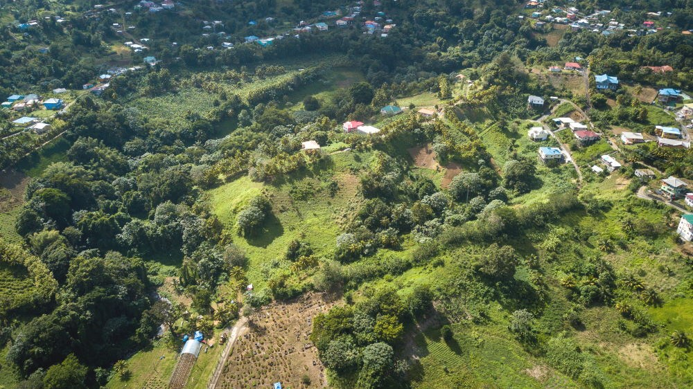 RE/MAX real estate, St. Vincent & Grenadines, Mesopotamia, CANE END RESIDENTIAL LOT #17